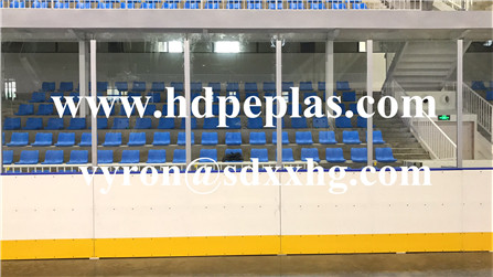 ice skating dasher boards/ice hockey dasher boards