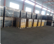 Shandong Ningjin Xinxing Chemical Co., Ltd.